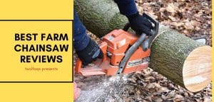 Best Farm Chainsaw